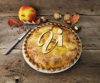 Royalty Free Photo of a Homemade Apple Pie
