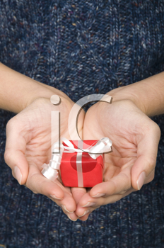 Royalty Free Photo of a Person Holding a Small Gift