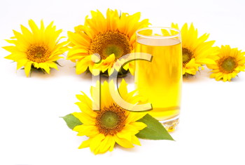Royalty Free Photo of Sunflower Oil and Sunflowers