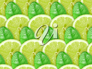 Abstract background with citrus-fruit of lime slices and green leaf with dew for your design. Close-up. Studio photography.