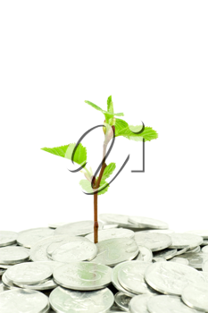 Royalty Free Photo of a Financial Growth Concept