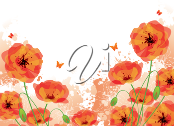 Vector illustration of Red poppies back